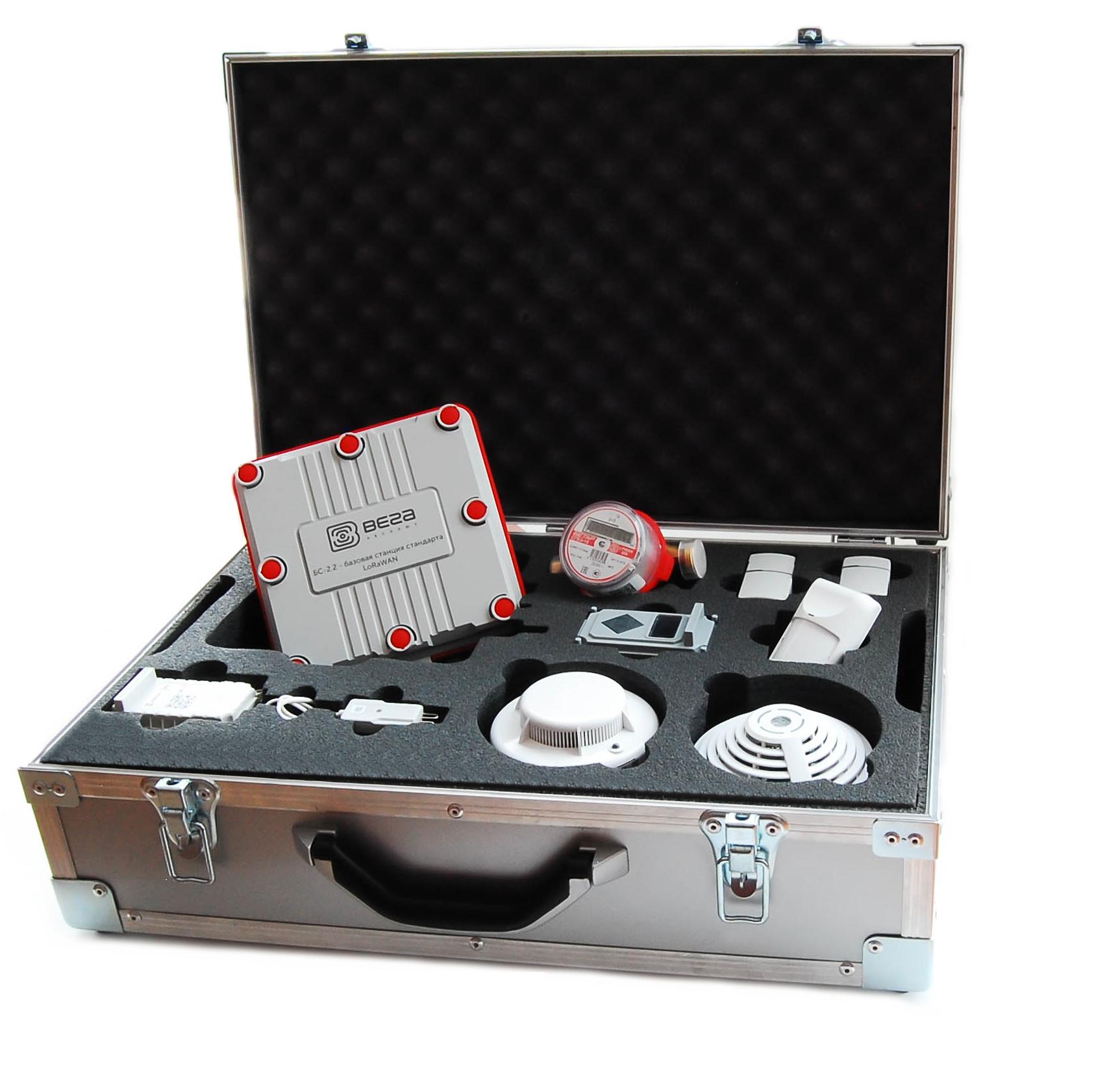 Vega TD-11 temperature sensor LoRaWAN®